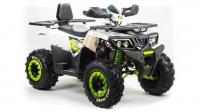 З/Ч ATV 200 WILD TRACK LUX (2020)