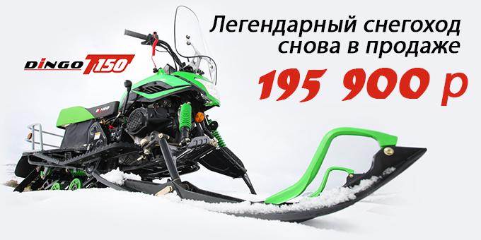 Снегоход Dingo T150 в Мурманске
